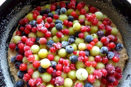 Johannisbeeren, Stachelbeeren, Aroniabeeren. Beeren aus dem Garten lassen sich gut mit Wildobst mischen.